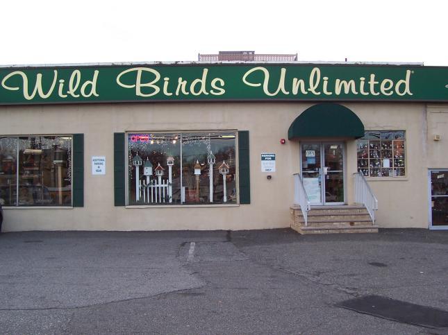 17 bird